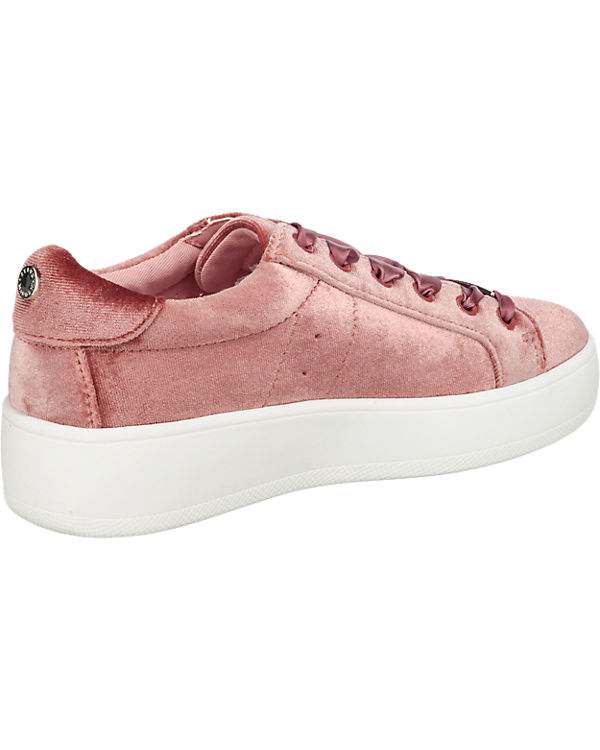 STEVE MADDEN Bertie Sneakers rosa