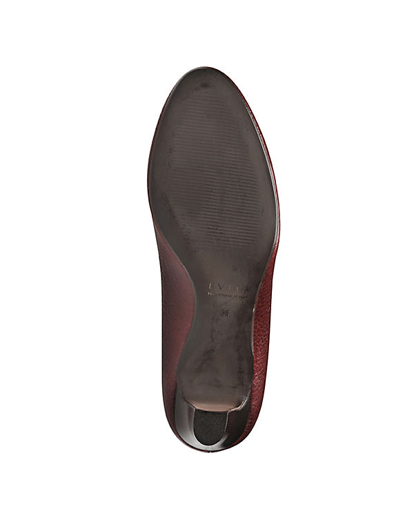 Pumps Shoes Shoes Evita bordeaux Evita xSn0aqwn71