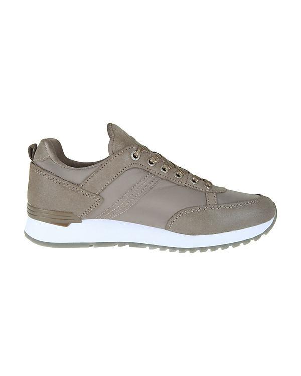 COLMAR TRAVIS STARS Sneakers Low gold