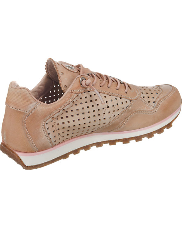 Cetti Sneakers Low nut