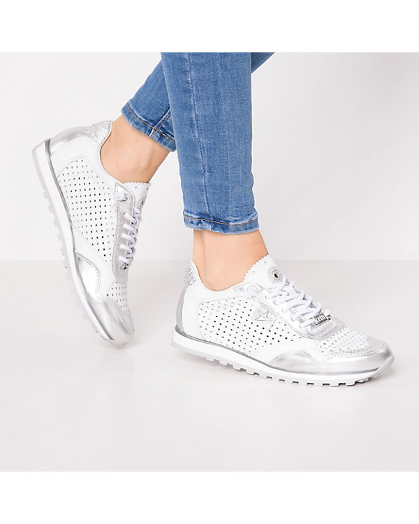 weiß kombi Cetti Cetti Low Sneakers Sneakers UxIwRqPw
