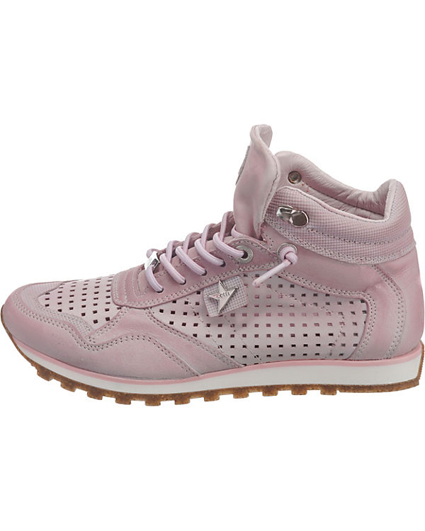 High rosa Cetti High Sneakers Cetti Sneakers rosa High Sneakers rosa Cetti wqYg61W