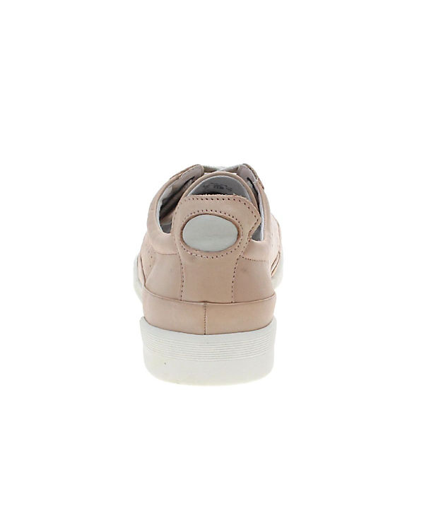 camel Low active camel Sneakers Low mehrfarbig mehrfarbig active camel camel mehrfarbig active Low Sneakers Sneakers A4Zqt